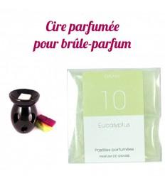 """Pastilles de cire parfumée, senteur """"Eucalyptus"""" par Drake"""