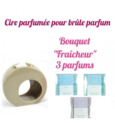 """Pastilles de cire parfumée, Bouquet """"Fraîcheur"""" 3 parfums - Drake"""