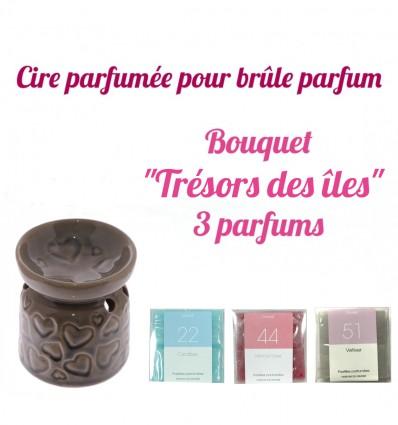 """Pastilles de cire parfumée, Bouquet """"Trésors des Îles"""" 3 parfums - Drake"""