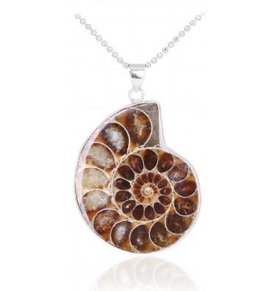 Collana con ciondolo Ammonite Fossile