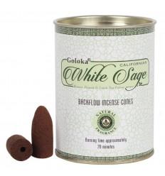 Scatola da 24 coni di incenso Backflow Goloka White Sage - Incenso indiano naturale